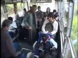 بالفيديو..  قرد يتخلّى عن مقعده في الحافلة لإمرأة مسنّة!