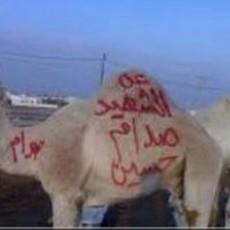 أردني يقدم أضحية عن روح صدام حسين