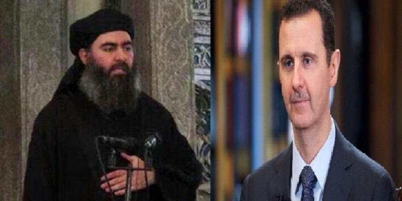 البغدادي والأسد