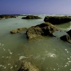 جزر الحلانيات