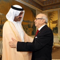السبسي ووزير الخارجية الإماراتي الشيخ عبدالله بن زايد آل نهيان