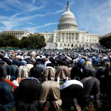 المسلمين في أمريكا
