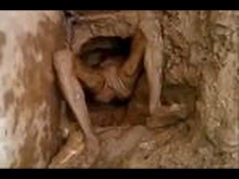 بالفيديو… سجين حاول الهرب من مرحاض السجن فاحتجز فيه!