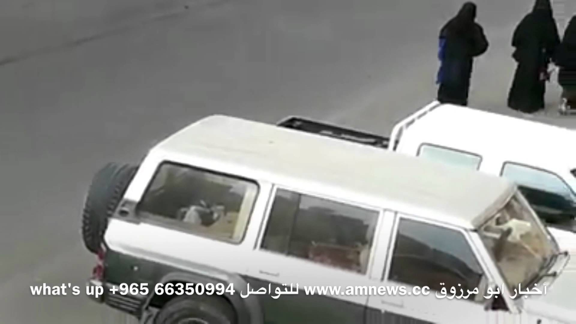 فيديو.. توقيف أبطال واقعة تحرش جماعي جرت بالسعودية
