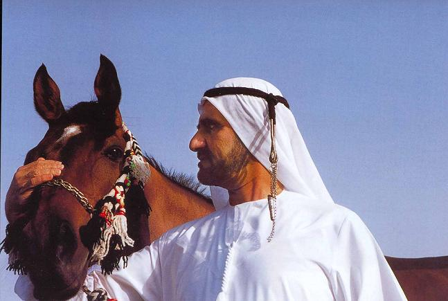 الخيول أهم من المهجرين والبائسين